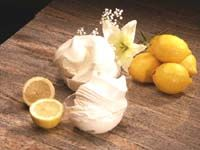 superlemon - italia ice service - prodotti per gelaterie